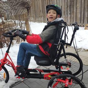 Albert Tricycle